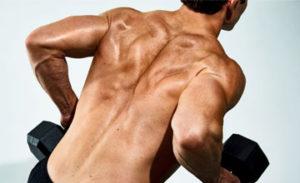 Как накачать спину гантелями