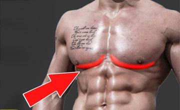 как прокачать нижнюю часть грудных мышц