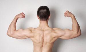 Как накачать плечи без железа