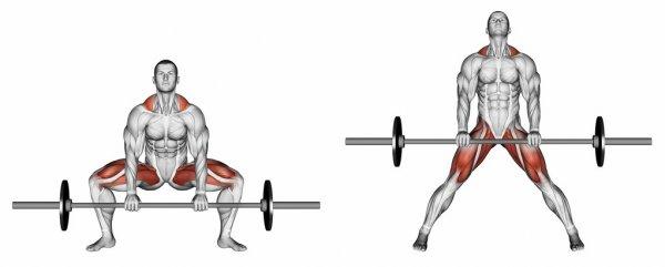 Какие мышцы работают в становой тяге сумо